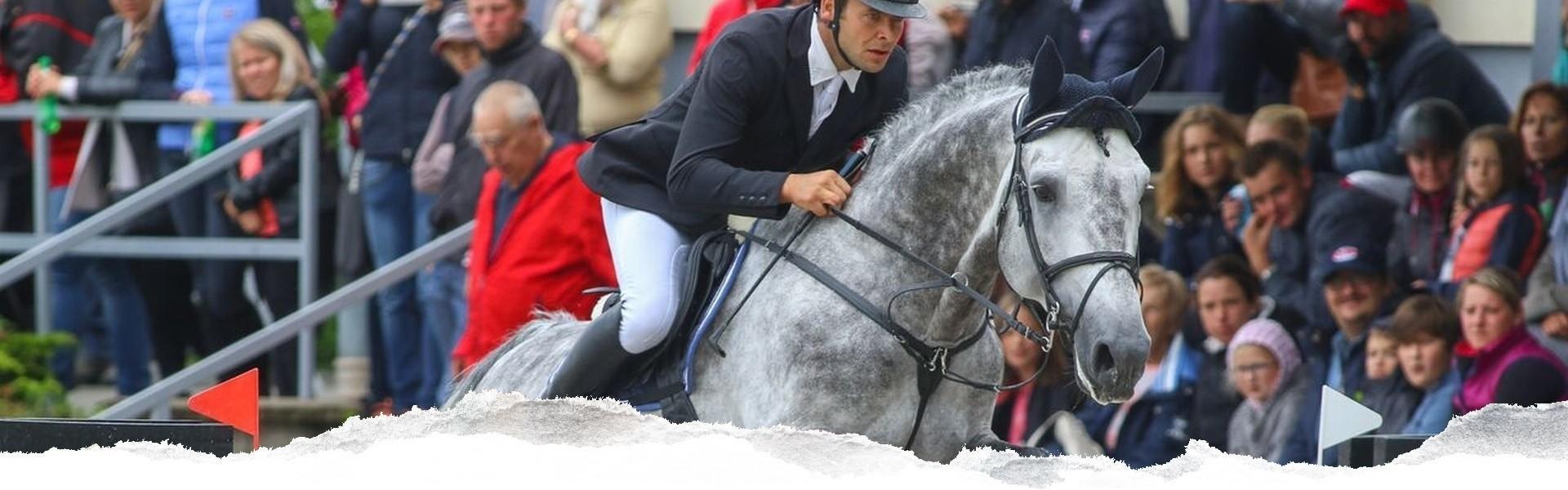 Stáj dvůr Židovice - naše koně